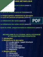 Biochimie Metabolique