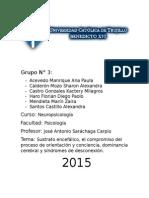 Informe Sustrato Encefálico, Conciencia y Orientacion, Dominancia Cerebral y Sindromes de Desconexión (1)