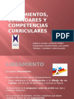 Lineamientosestndaresycompetenciascurriculares 121009221533 Phpapp02