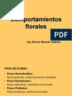 4 Comportamientos Florales_1