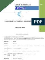 esquemas-categorc3adas-morfolc3b3gicas