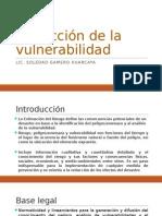 Reducción de la vulnerabilidad.pptx
