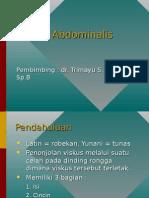 Hernia Abdominalis