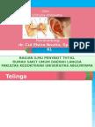 Anatomi Dan Fisiologi Telinga