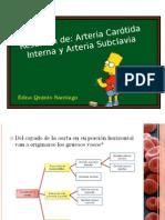 Resumen de Carótida Interna y Subclavia