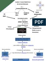 Enlaces Quimicos PDF