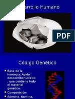 desarrollo genetico