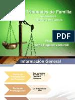 Tribunales de Familia 2013