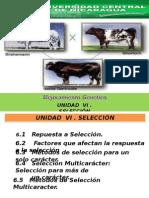 Mejoramiento Genetico Matutino 5 (clase)