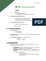 esquematema1