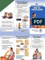 El Mercurio Brochure