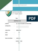 Informe de Biokimica Amortiguador 2013