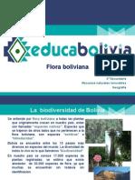 (PR) Flora Boliviana