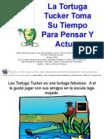 Proyecto Tortuga 2015