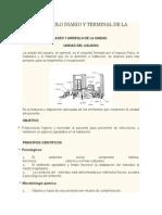 Aseo y Arreglo Diario y Terminal de La Unidad y Cavidades Easeo