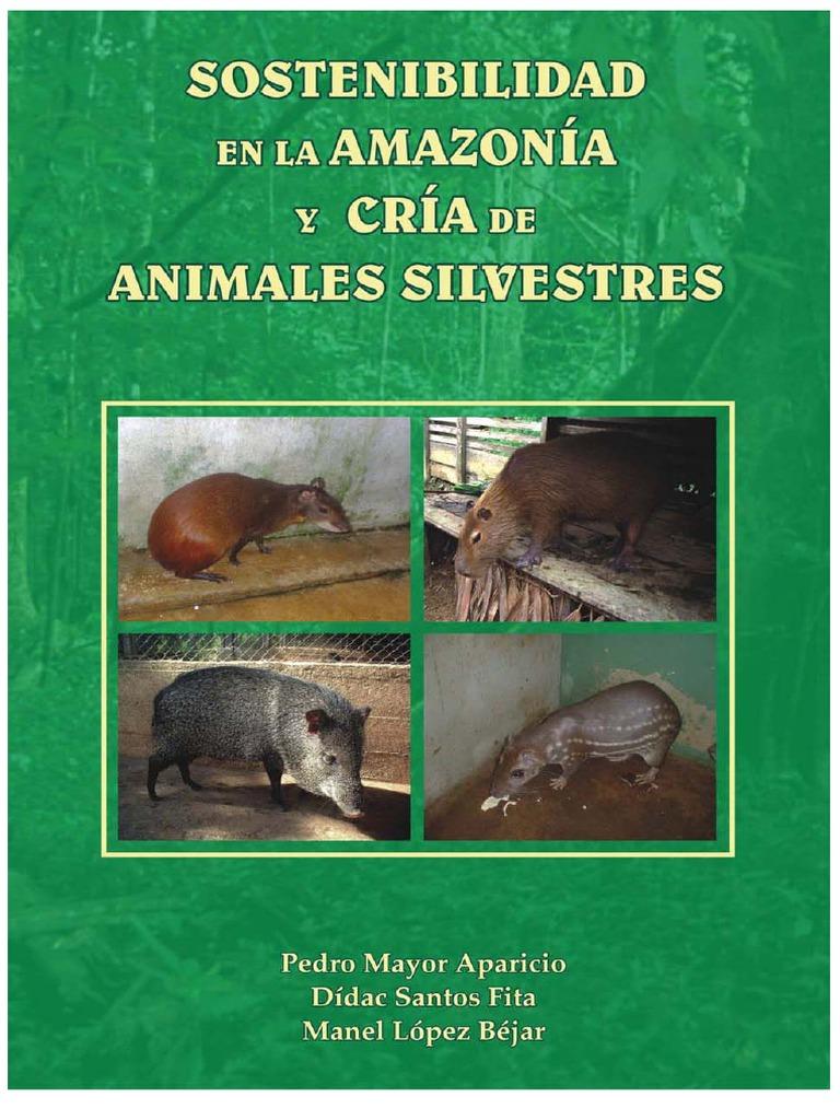 Sostenibilidad en la Amazonia y Cría de Animales Silvestres