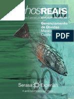 1GerenciamentoDividas_WEB.pdf