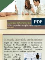 1 Panorama Profesional en México