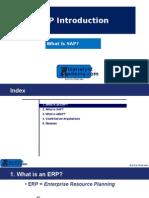 0102 Introducción - What is SAP (Ss)
