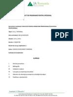Succesul Profesional Programa Si Planificare 2015 Vf