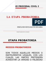 ETAPA PROBATORIA