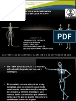 Sistema Esqueletico (2)