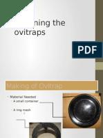 Ovitrap Making Steps