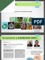 Unidad II. Algas_Clasificación Filogenética