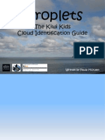 Cloud Identification Guide