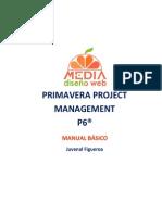 P6 Manual Basico