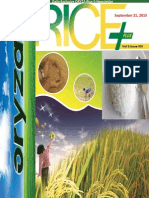 21st September,2015 Daily Exclusive ORYZA Rice E-Newsletter by Riceplus Magazine