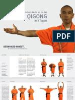 qigong_bernhardmoestl.pdf