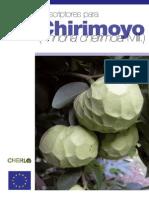 Chirimoyo_1295