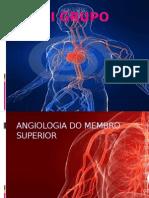 VIII GRUPO Angiologia
