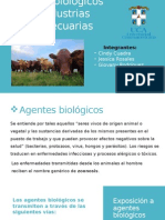 Riesgos Biologicos en Industria Agropecuaria Final
