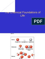 The Chemical Foundation of Life (2)