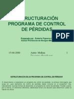 Estructuración Programa de Control de Pérdidas