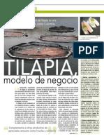 06 modelo.pdf