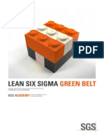 MS1 - Lean Six Sigma Green Belt