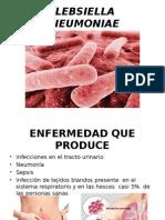 Klebsiella Pneumoniae Carla