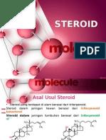 STEROID (Revisi Akhir)