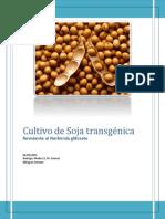 Cultivo de Soja transgénica.pdf