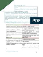 SF3_Ejemplo de Interpretacion DAFO