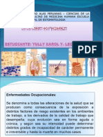 enfermedades ocupacinales