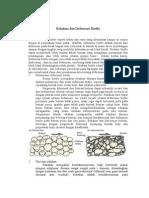 Rekahan Dan Deformasi Brittle WMC