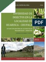 Diversidad de Insectos en La Localidad de Huarisca_l.egoavil