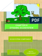 chapter8-dynamicecosystem-140530101319-phpapp02.ppt