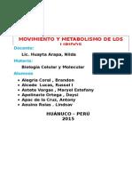 Monografía GRUPO 6