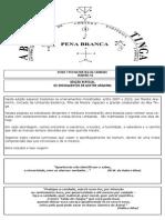 INTRODUÇÃO - UMBANDA ESOTÉRICA.pdf