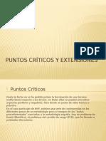 Puntos Críticos y Extensiones